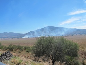 Burning the maize fields makes for smokey stinky riding