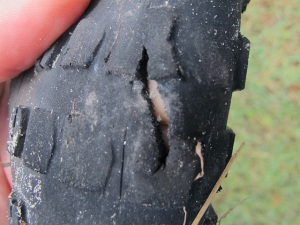 Shredded the front tyre. A cheap Mexican tire, our Scwalbe blew a side wall after 1000km. Devo'd
