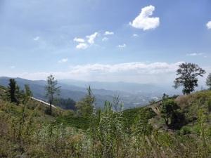 A regular view riding through Guatemala