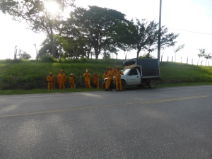 Roadside workers are the best!