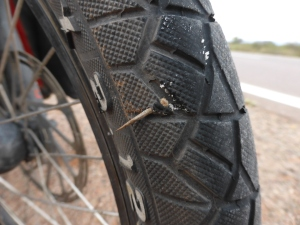 Miraculously, this huge thorn only pierced the side of the tyre and missed the tube. Thank you bike gods!