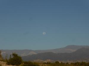 Woe! Huge daytime moon!