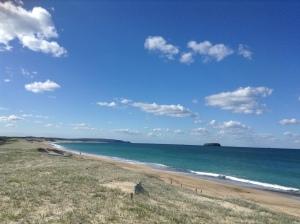 Budgie Woi Beach